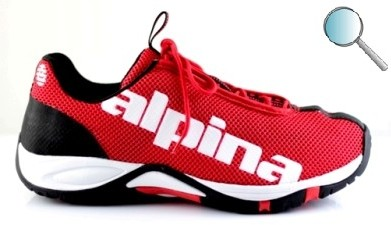 Buty do nordic walking Alpina EWS